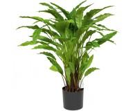 CALATHEA Kunstpflanze, 85 cm
